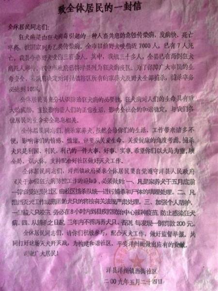 lieve_hondjes_china_1