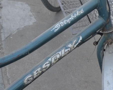 china_fietsen_15_1