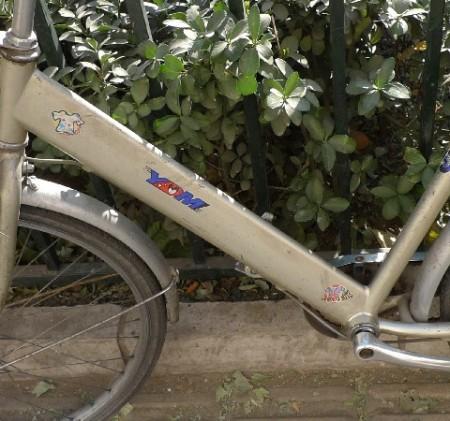 china_fietsen_15_93