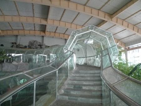 slangen-museum-2-3a