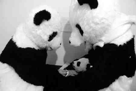 panda-centrum-3