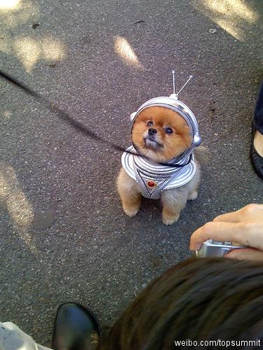ruimtehond-1