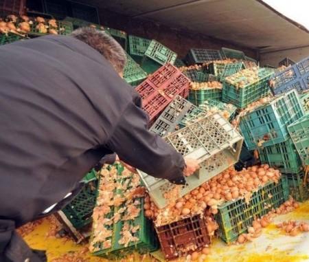 vrachtwagen-eieren-kluts-china-3